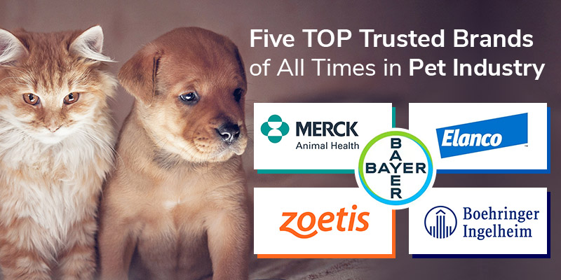TOP Trusted Brands of All Times in Pet Industry