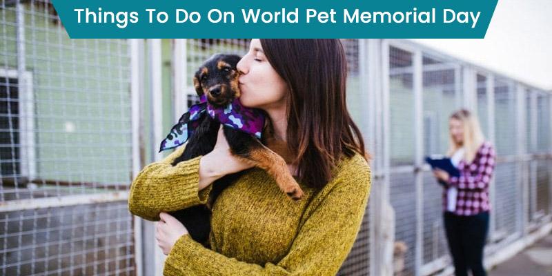 World Pet Memorial Day